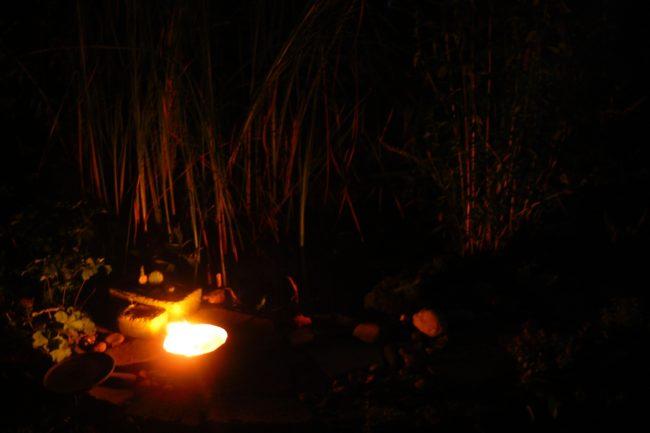 Sommerabend am Teich