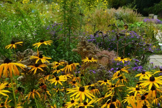 Flora Botanischer Garten Köln