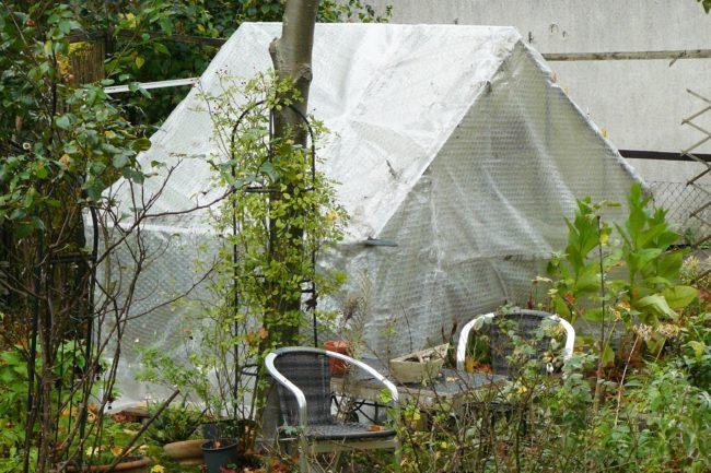 Gewächshaus mit Winterschutz.