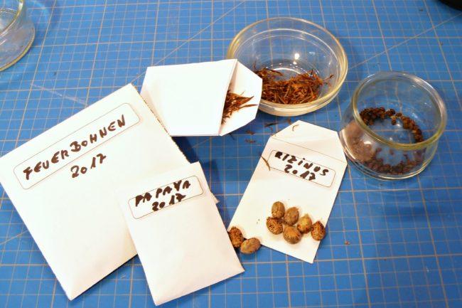 Anleitung für Samentüten