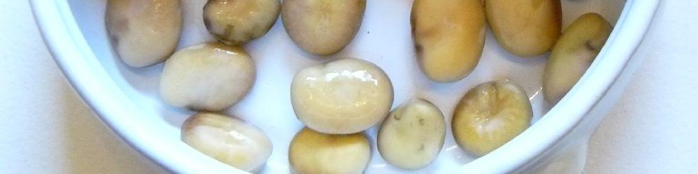 Puffbohnen dicke Bohen