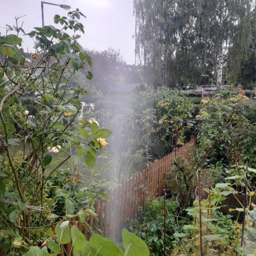 Geysir im Garten