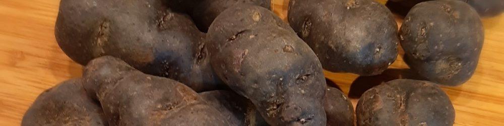 Trüffelkartoffel