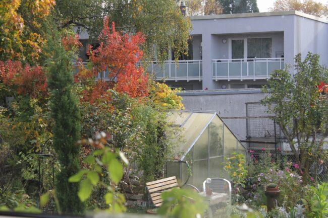 Gewächshaus im Herbstgarten